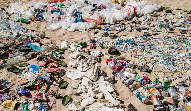 Every meter of coastline will hold 50 kg of plastic in 20 years Newsroom Panama